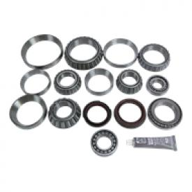 Eaton DT402 Differential Bearing Kit