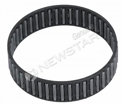 SPICER 313668X Bearing